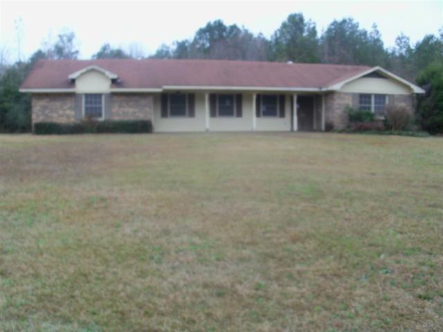 8735 County Road 239, Jack, AL 36346 (MLS #20180104) :: Team Linda Simmons Real Estate