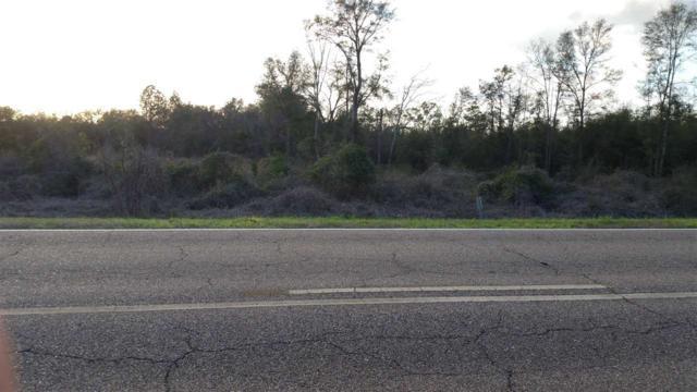 00 S Highway 85, Daleville, AL 36322 (MLS #20180446) :: Team Linda Simmons Real Estate