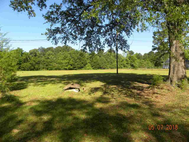TBD Country Circle, Daleville, AL 36322 (MLS #20181167) :: Team Linda Simmons Real Estate