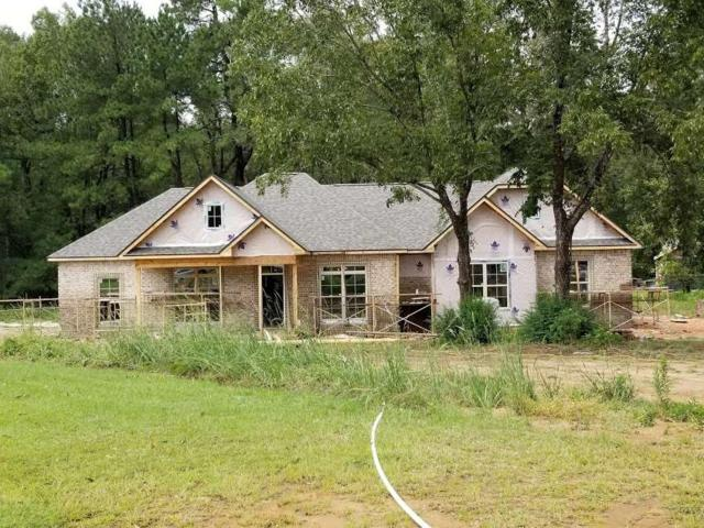 100 Natchez Way, Ozark, AL 36360 (MLS #20171714) :: Team Linda Simmons Real Estate