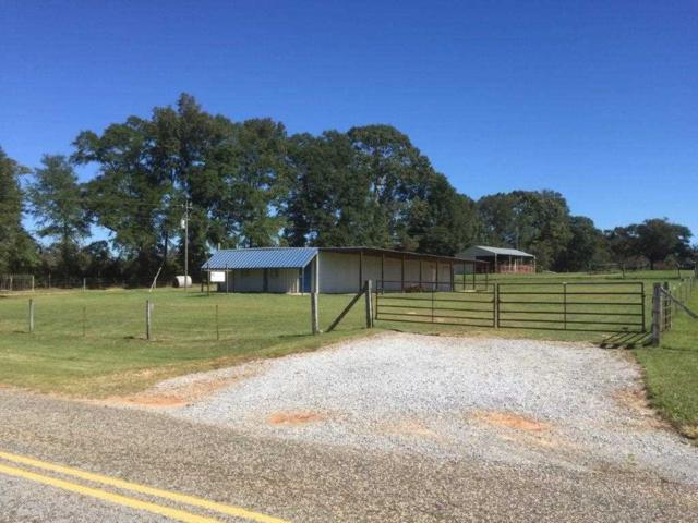836 County Road 151, New Brockton, AL 36351 (MLS #20172068) :: Team Linda Simmons Real Estate