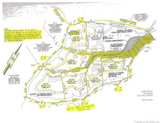 257 Racefield Drive, Toano, VA 23168 (#1706052) :: Abbitt Realty Co.