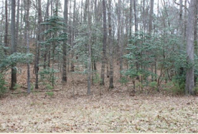 Lot 1 Deerwood Court, Gloucester, VA 23061 (#1715882) :: Green Tree Realty