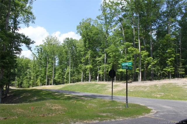LOT 81 Arbor Place, Williamsburg, VA 23188 (MLS #1719754) :: Chantel Ray Real Estate