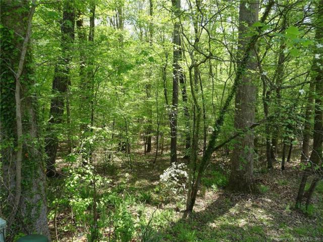 122 Whistle Walk, Williamsburg, VA 23188 (MLS #1814956) :: Explore Realty Group