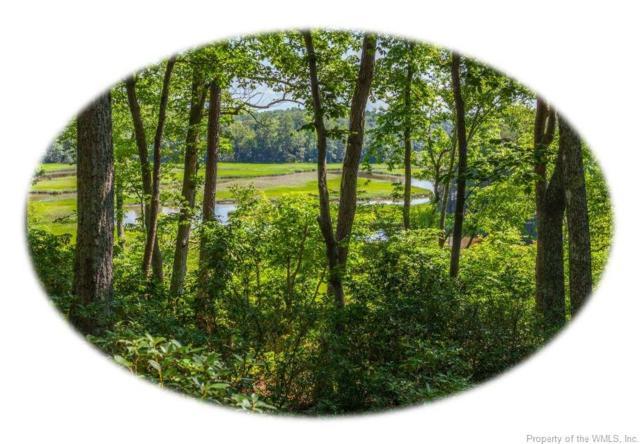 402 Skimino Landing Drive, Williamsburg, VA 23188 (#1821662) :: Abbitt Realty Co.