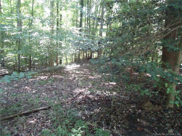 25 Walnut Hills Circle, Williamsburg, VA 23185 (MLS #1830515) :: Chantel Ray Real Estate