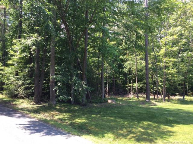168 Bush Springs Road, Toano, VA 23168 (#1900257) :: Abbitt Realty Co.