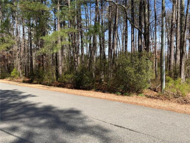 119 Land Grant Road, Yorktown, VA 23692 (MLS #1900996) :: Chantel Ray Real Estate
