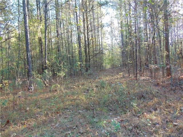93 acres Lebanon Road, Surry, VA 23881 (#1904676) :: Abbitt Realty Co.