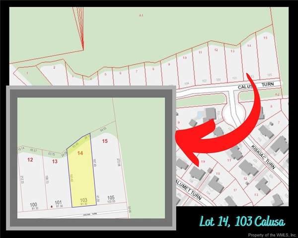 103 Calusa Turn, Yorktown, VA 23693 (#2004358) :: Atlantic Sotheby's International Realty