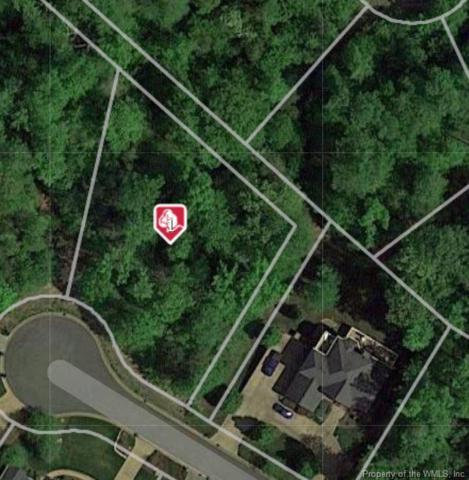 208 Monifieth, Williamsburg, VA 23188 (MLS #1902250) :: Chantel Ray Real Estate