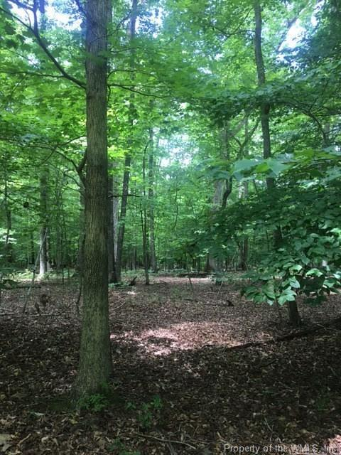 LOT 79 Arbor Place, Williamsburg, VA 23188 (MLS #1719432) :: Chantel Ray Real Estate