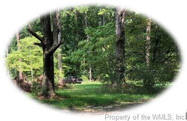 9911 Sycamore Landing Road, Toano, VA 23188 (#1830787) :: Abbitt Realty Co.