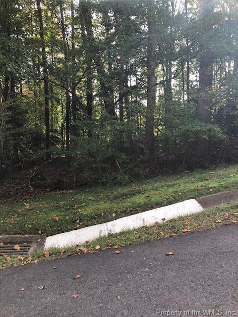 136 Great Glen, Williamsburg, VA 23188 (MLS #1833132) :: RE/MAX Action Real Estate