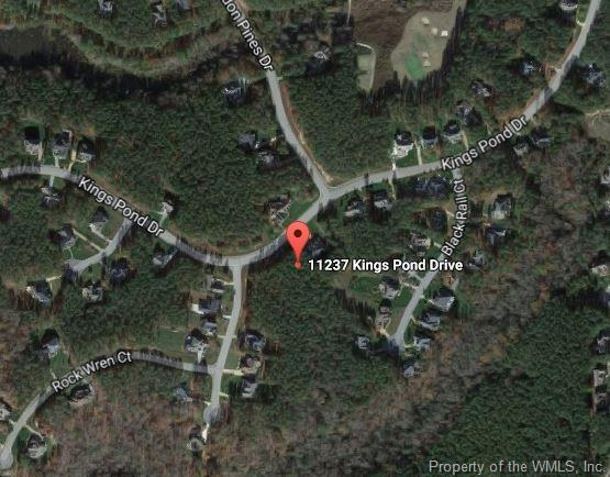 11237 Kings Pond Drive, Providence Forge, VA 23140 (MLS #1833252) :: Explore Realty Group