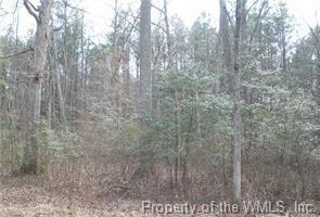 Lot 89 & 90 Cypress Trail, Gloucester, VA 23061 (#1833278) :: Abbitt Realty Co.
