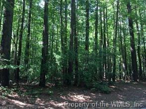 Lot 41 Wilton Creek, Hartfield, VA 23071 (#1833279) :: Abbitt Realty Co.