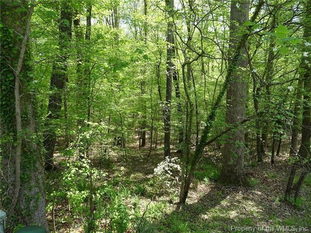 122 Whistle Walk, Williamsburg, VA 23188 (#1900212) :: 757 Realty & 804 Homes