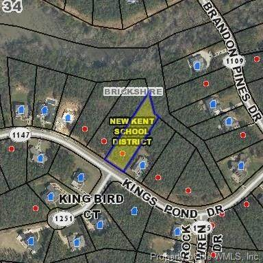11070 Kings Pond Drive, Providence Forge, VA 23140 (MLS #2000503) :: Chantel Ray Real Estate