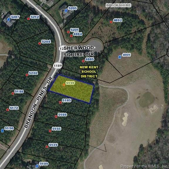 5199 Brandon Pines Drive, Providence Forge, VA 23140 (MLS #2000504) :: Chantel Ray Real Estate
