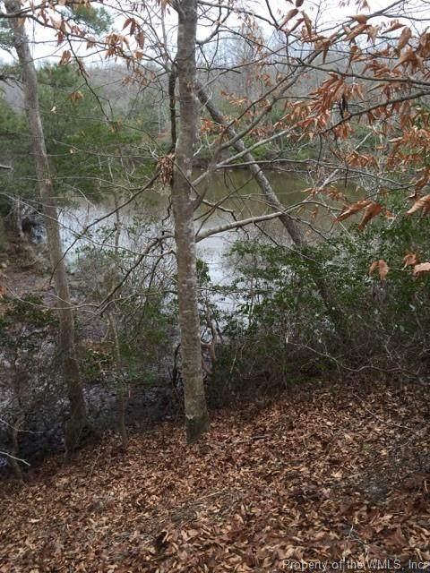 9987 Mill Pond Run, Toano, VA 23168 (MLS #2001223) :: Chantel Ray Real Estate