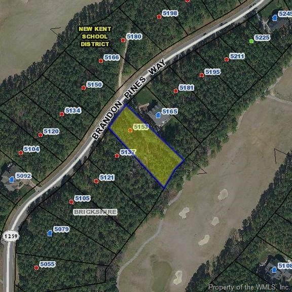 5153 Brandon Pines Way, Providence Forge, VA 23140 (MLS #2004569) :: Howard Hanna Real Estate Services