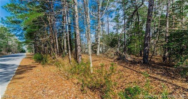 1+ac River Bend Trail, Lanexa, VA 23089 (#2004816) :: Abbitt Realty Co.
