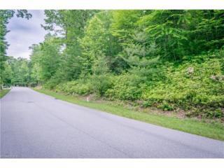 698 Dunroy Drive #12, Hendersonville, NC 28739 (#3184238) :: Puffer Properties