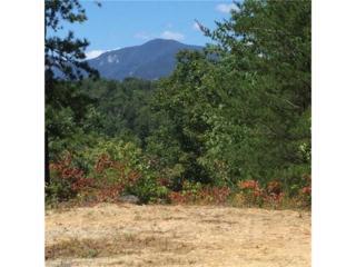 16 Forest Glen Trail #16, Lake Lure, NC 28746 (MLS #3210808) :: Washburn Real Estate