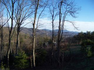 146 Summit Tower Circle Lot 211, Asheville, NC 28804 (#3211066) :: Exit Realty Vistas