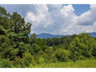 0 Emily Ridge Drive #9, Candler, NC 28715 (#3219350) :: Exit Realty Vistas