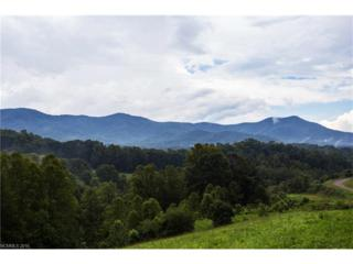 0 Emily Ridge Drive #10, Candler, NC 28715 (#3219697) :: Exit Realty Vistas