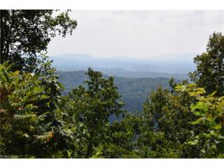 24 Lake Town Lane #253, Asheville, NC 28804 (#3220351) :: Exit Realty Vistas