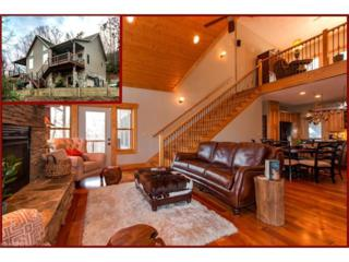 179 Rock Spring Road, Lake Lure, NC 28746 (#3239390) :: Exit Mountain Realty