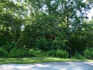 96 Turkey Roost Court, Hendersonville, NC 28739 (#3240001) :: Puffer Properties