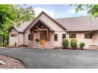 39 Chestnut Ridge Road, Mills River, NC 28759 (#3246744) :: Exit Realty Vistas