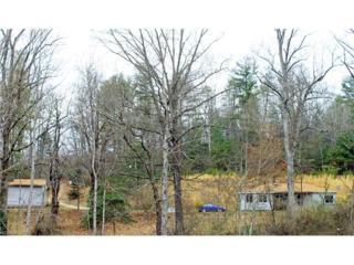 118 Elk Dell Lane, Zirconia, NC 28790 (#3254795) :: Exit Realty Vistas
