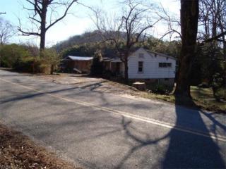 226 Capps Road, Tryon, NC 28782 (#3255003) :: Exit Realty Vistas