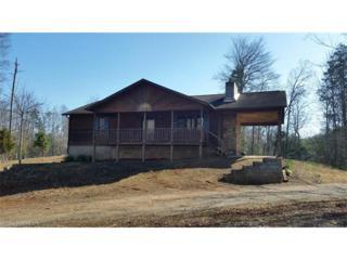 407 Searcy Road, Lake Lure, NC 28746 (MLS #3255257) :: Washburn Real Estate