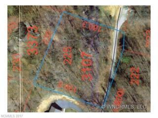 Lot 225 Hoot Owl Ridge Lot 225, Waynesville, NC 28786 (#3255618) :: Exit Realty Vistas