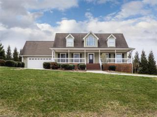 71 Lewis Creek Drive, Hendersonville, NC 28792 (#3255655) :: Exit Realty Vistas