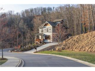 5 Dubois Drive, Asheville, NC 28805 (#3258458) :: Exit Mountain Realty