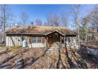 144 Farside Drive, Hendersonville, NC 28739 (#3262567) :: Exit Mountain Realty
