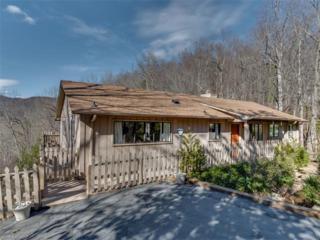 145 White Pine Drive, Lake Lure, NC 28746 (#3264844) :: Exit Mountain Realty