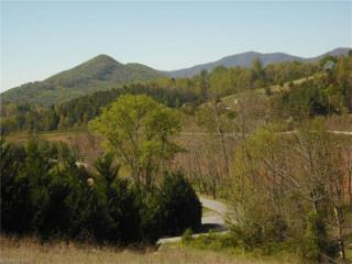 2 Timber Line Drive Lot 1, Leicester, NC 28748 (#3268581) :: Team Browne - Keller Williams Professionals