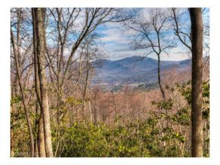 22.82 acres Sharp Road, Black Mountain, NC 28711 (#3268825) :: Exit Realty Vistas