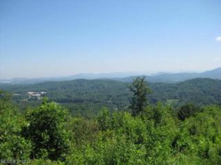 136 Bay Laurel Lane #2035, Hendersonville, NC 28792 (#3271134) :: Exit Mountain Realty