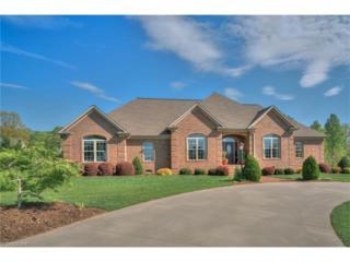 165 Hawks Ridge Drive, Forest City, NC 28043 (#3273496) :: Exit Realty Vistas