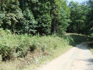 lot 44 Laurel Mountain View Road, Flat Rock, NC 28731 (#3274089) :: Exit Realty Vistas